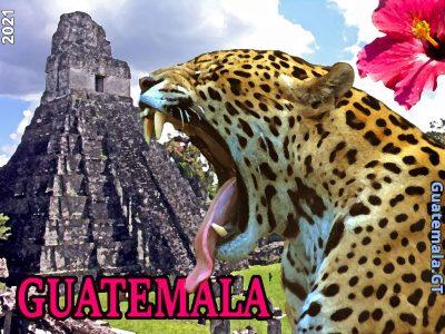 jaguar-piramide.jpg