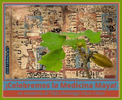 medicina-maya.jpg